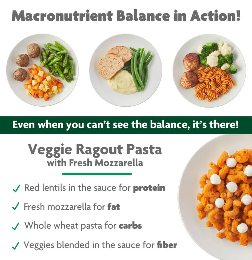 macronutrient balance in our meals